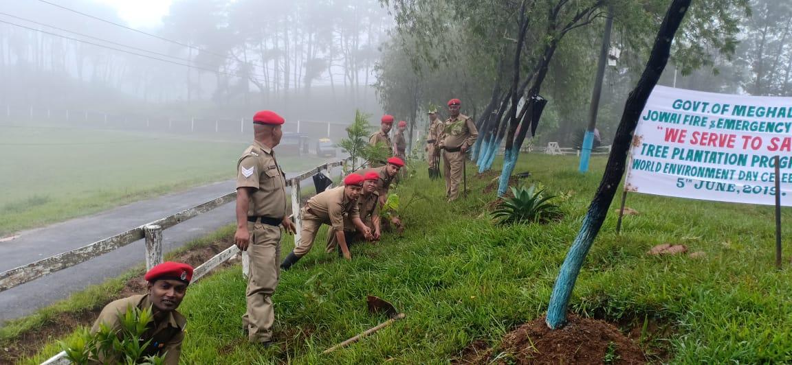 World Environment Day 5th June 2019 planting of tree saplings