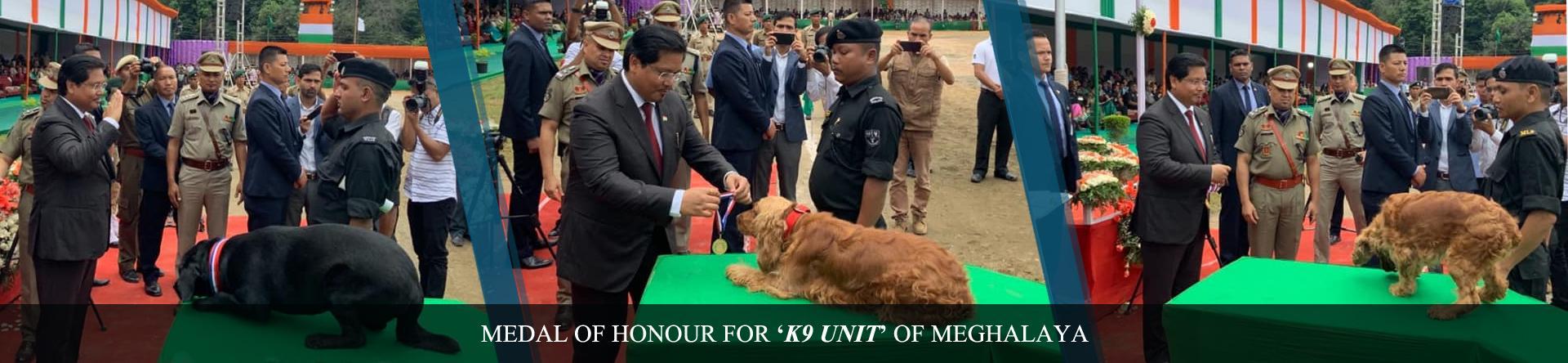 Medal of Honour for K9 Unit